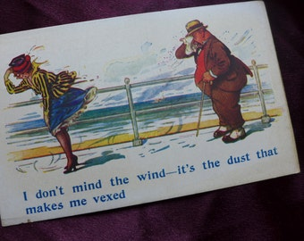 Vintage Antique Postcard / Single Card / I Don't Mind the Wind.../ Humorous Naughty