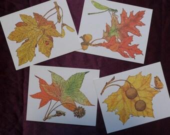 Vintage Current Autumn Leaves Leaflet Cards