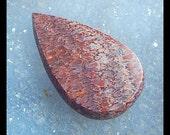 Dinosaur Bone Fossil  Cabochon,43x26x5mm,9.8g