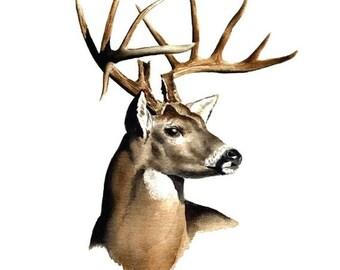 Waterslide Nail Decals Set of 20 - Deer Buck Antlers