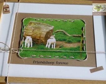 Friendsheep Forever - Framed Picture - Keepsake for Best Friend - Irish Lambs - Handmade in Ireland