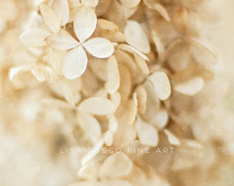 Dreamy Beige Hydrangea Print or Canvas Art, Winter White Decor, Botanical Print, Vintage Hydrangea Photography, Beige Tan Cream, Vertical.