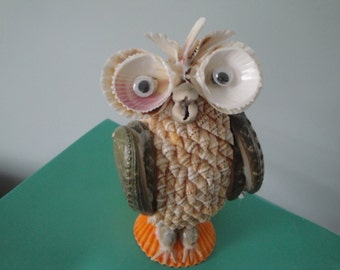 Sea Shell Seashell Melo Owl Figurine