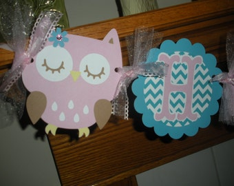 Owl Banner, Owl Birthday Banner, Owl pink and turquoise banner, 1st birthday owl banner, matching tissue poms available
