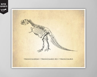 Tyrannosaurus Rex Art Print, Dinosaur Art Print, T-Rex Natural History Poster, Natural History Dinosaur Print, T-Rex Print, Tyrannosaurus
