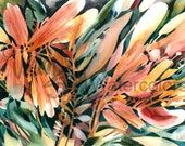 """Abstract Flowers Art Print, Floral, Red Orange, Yellow, Red, Fuchsia, Blue - Green, Watercolor Painting Wall Art, Home Decor, """"Flamboyance"""""""