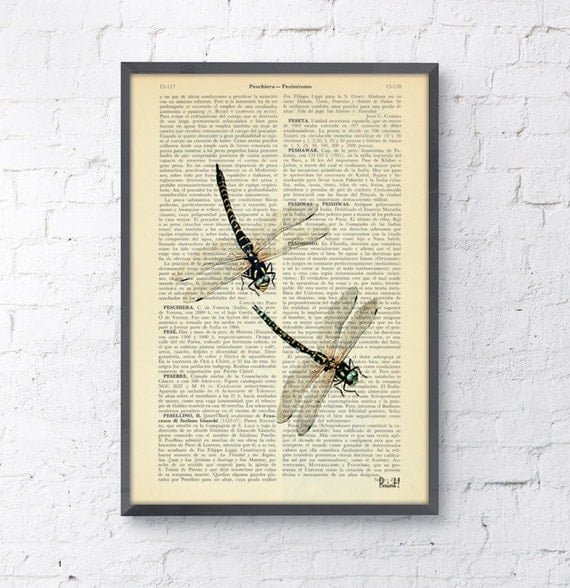 Christmas Sale Dragonfly Dictionary Book Print - nature art house decor wall art Altered art on upcycled book pages BFL026