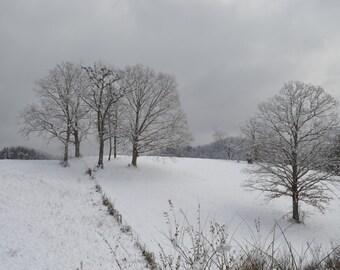 Snow Calm - Photo -  Winter Mountain Photo, snow photo