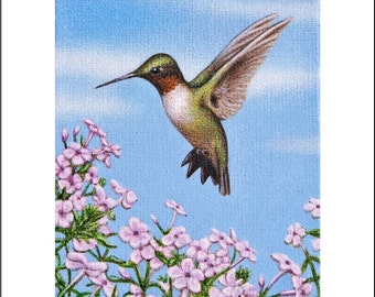 Hummingbird pink flowers ACEO limited edition signed numbered miniature art print of original bird painting Karen Romine free shipping KR