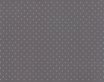 Modern Background Ink Pindot Graphite, Brigitte Heitland, Zen Chic, Moda Fabrics, 100% Cotton Fabric, 1588 28