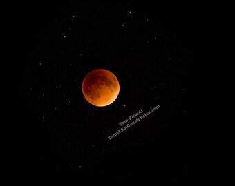 Blood Moon Photo- Super Moon- Moon photography- Night photo- Skull Moon