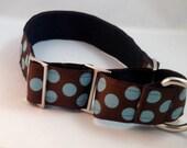 Brown Blue Polka Dot Martingale Dog Collar