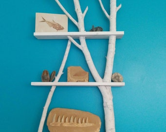 Maria's Birch Wood Shelves