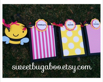 Baby's 1st Year Photo Banner, Bee theme, Girls Birthday.  Garden Party.  Happy Bee Day.  Bee Banner.  Bug Banner.  Happy Birthday Banner