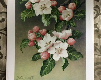 Vintage Cherry Blossom litho 1961 DAC NY No 3570 USA