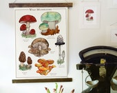 Wild Mushrooms Canvas Wall Hanging - Botanical Illustration