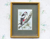 Woodpecker Embroidery Wall Art Picture - Cash Woven silk - Colorful bird Vintage Home Decor - Picture Frames