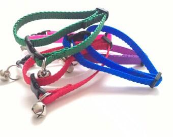 Cat Collar - Choose your Webbing Color