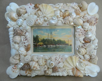 Beachcomber Seashell Frame 100% Custom Made