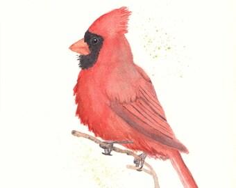 Cardinal 8x10 Watercolor Painting, wall art,animal,bird, not a print, wildlife,Cardinal,nature,art,artwork,painting,original