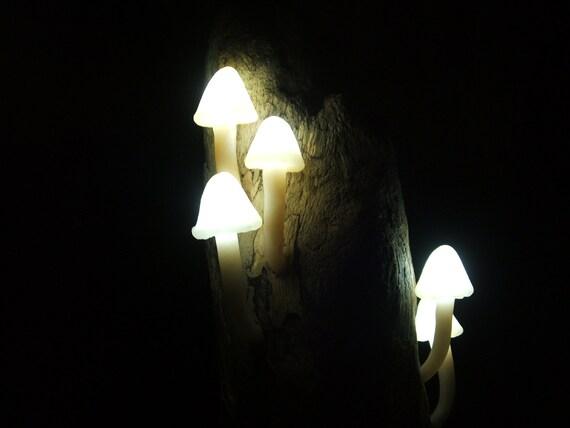 Magical Mushrooms. Shroom and Driftwood l.e.d. Mood Lighting Sculpture.