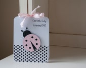 Ladybug First Birthday Party Invitations Baby Shower Baby Girl Lady Bug Pink Black Polka Dots