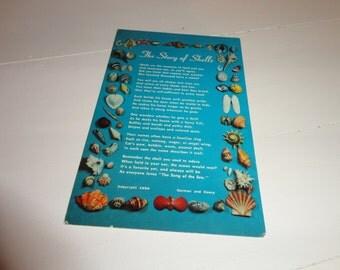 Vintage Shell Postcard