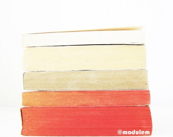 An afternoon in Munich - Fine art print of vintage books, stripes, red, slate grey, gray, alabaster, ivory, 8x8, 8x10