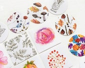 Box Paper Sticker Set - Nature Collector - 45 Pcs