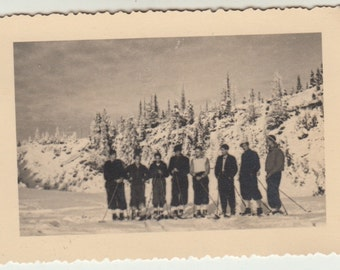 Vintage/Antique photo of eight men on skis