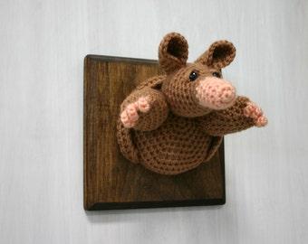 Crochet Taxidermy Armadillo