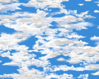 OUR NATIONAL PARKS~aqua blue sky with clouds  by the 1/2 yard Quilting Treasures fabric-24404-b