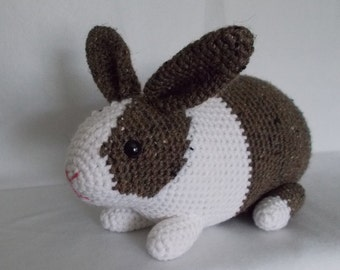 Brown and White Dutch Rabbit