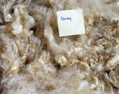 Leicester Longwool Raw Fleece, White, approx. 2.3 lbs., from Darley