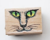 Catface rubber stamp green eyes Wood mounted #227D kitten