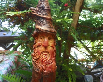 Phygar the pine knot wood wizard