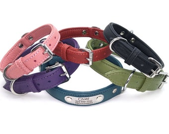 Solid Color Padded Leather Dog Collar with Laser Engraved Personalized Nameplate