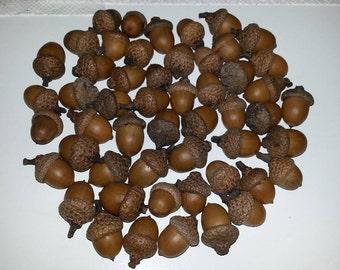 Acorns light brown - Qty 50