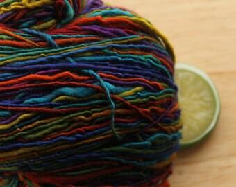 Dark Side of the Rainbow - Handspun Superwash Wool Yarn Sport Weight Skein
