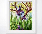 "Flag Iris Painting - Original Floral Art - Nature Illustration - Mixed Media Art - 10"" x 8"""