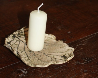 Green dogwood leaf - perfect gift for tree hugger!