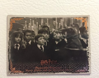 harry potter fridge magnet - first years