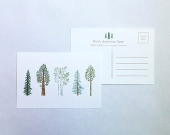 North American Trees Single 4x6 Postcard