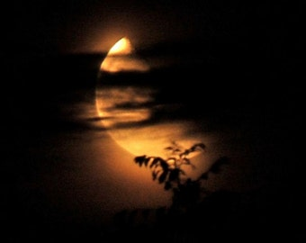 Molten Gold, square moon photograph, waning golden moon behind black clouds, night sky, moonlight, crescent moon, hazy clouds, red gold moon