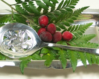 Tomato Server, CRANBERRY SERVER & TRAY, Tomatoes, Cranberries, Holiday Canape Server, Vintage Silver Plated, Hutton by Int'l, 1960, Under 35