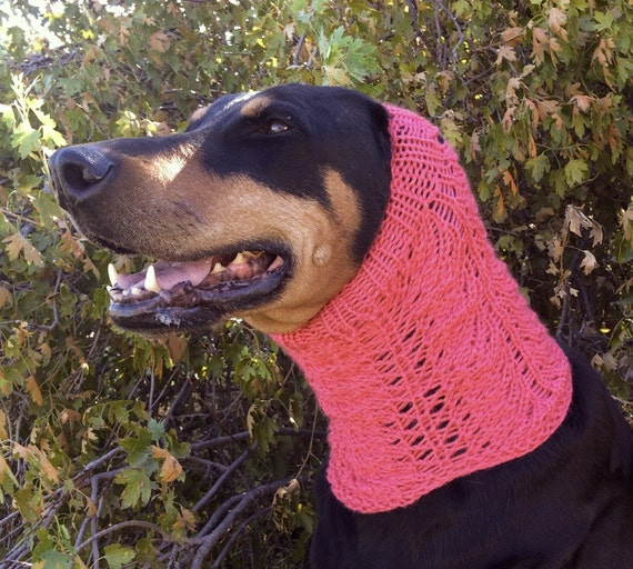 Lace Dog Snood PATTERN for size medium to large dog ...