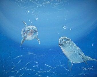 "Original 8x10""  Dolphin Canvas art Print #2 -: rdoward fine art"