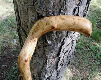 """33"""" left handed oak branch cane"""