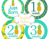 Unisex Newborn and Monthly Baby Stickers Pineapples Hawaii Tropical Months 1-12 plus Newborn Set Hawaiian Baby