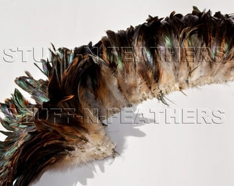 Wholesale bulk feathers HALF BRONZE Natural iridescent brown rooster tail feathers strung long strip / 5-8 in (13-20 cm) long / FB141-5-30